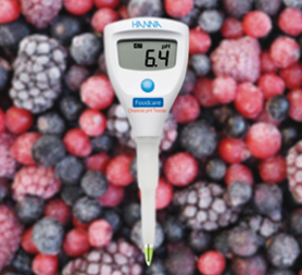 The Best pH Electrodes for Food