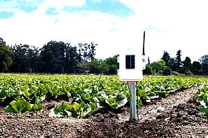 IC6345AU - Wireless Leaf and Soil Moist-Temp Station for Vantage Pro Weather Station